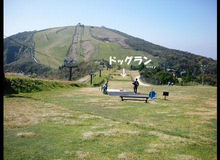 スキー場ですな。
