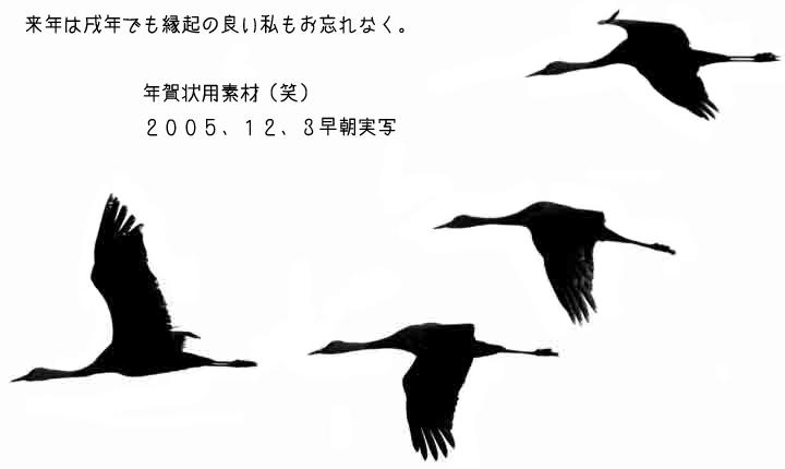 aaIMG_6563.jpg