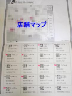 P8080095.jpg