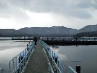 余呉湖292