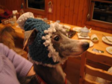 帽子ジュリア1