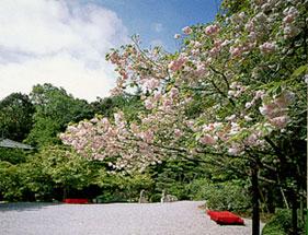 higashiyama03.jpg