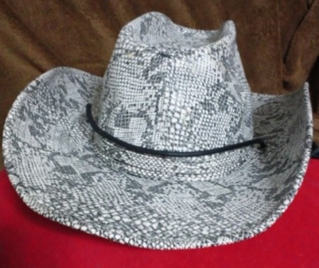hat 20120219-1