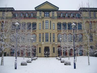 Judge with snow