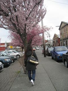 桜とさとこ