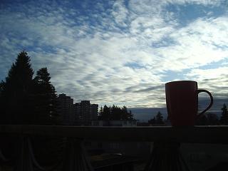 morning7.jpg