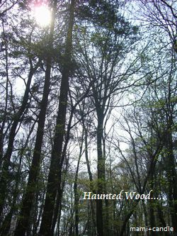 hauntedwood