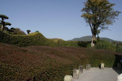枯山水の庭2