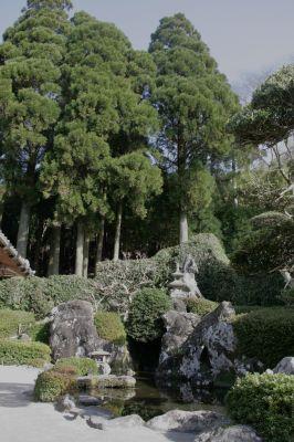 池の有る庭