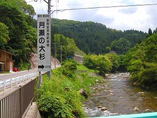 20080606e.jpg