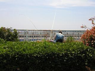 20080712c0.jpg
