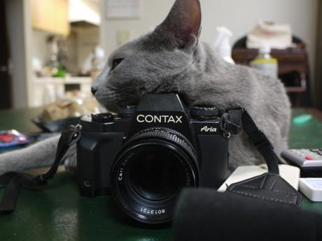 スモーキーとカメラ