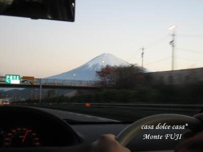 Fuji_convert_20081221230850[1] (2)