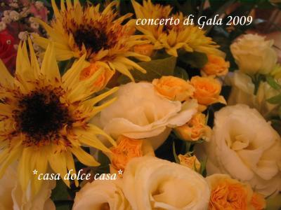 mazzo2_convert_20090725064258[1] (2)