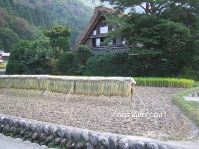 shirakawa2_convert_20090926064351[1] (2)