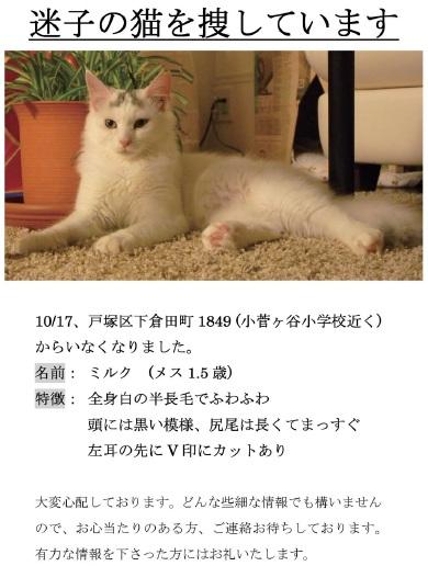 B5Milk_20111017.jpg