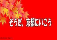 08kyoutoimage_convert_20081201191223.jpg