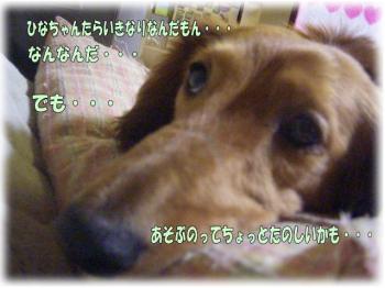 090601-8image6.jpg