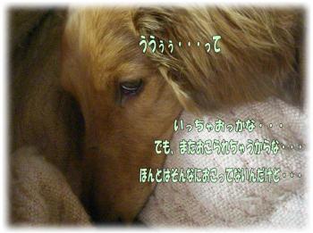 090607-1image1.jpg