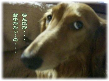 090614-1image1.jpg