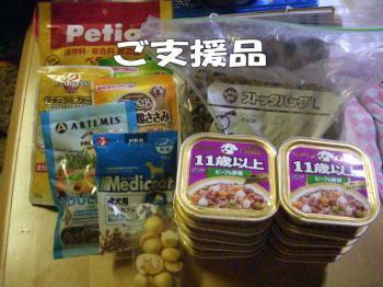 16satooya8image6.jpg