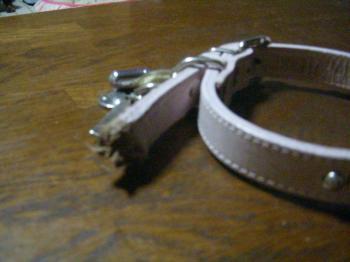 DSCN43762008-10-31eve.jpg