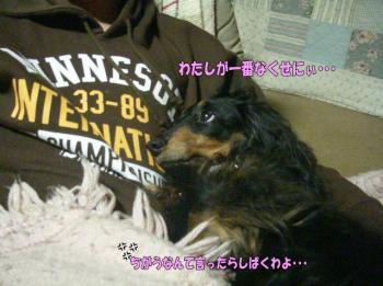momo2image1.jpg