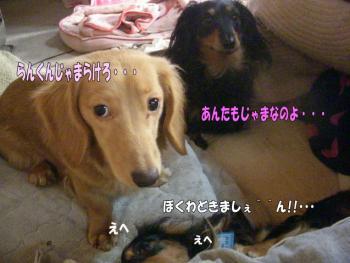 ranamae4image3.jpg