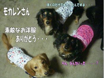 ranato5image4.jpg