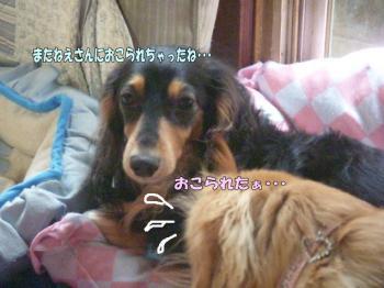 rangenki6image4.jpg