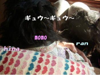 ranhyou2image2.jpg