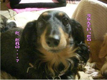 rantoraiaru4image1.jpg
