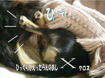 rantoraiaru6image3.jpg
