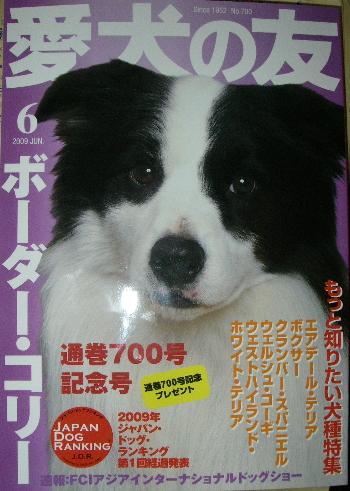 522-3.jpg