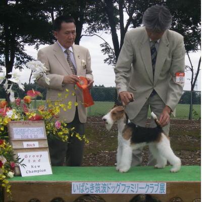 kogomi_20090403091150.jpg