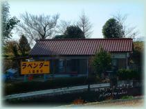 DSCF0937 2007.02.05