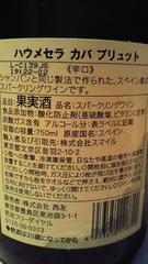 04_20090728091828.jpg