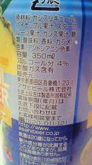 07_20090611111110.jpg