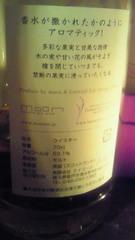 11_20090616102421.jpg