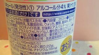 14_20090628112659.jpg
