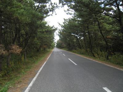 松林ロード