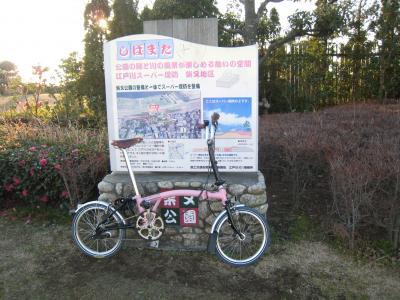 寅さん公園の桃子2