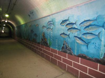 トンネル水族館2