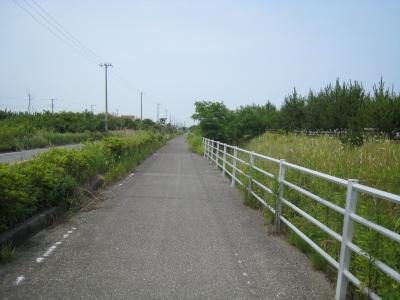九十九里自転車道3