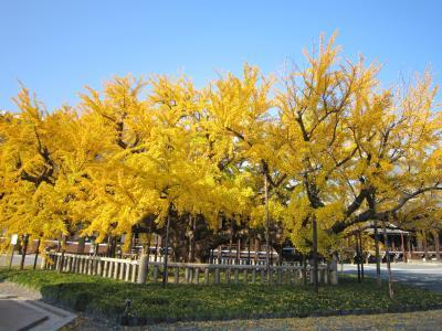 西本願寺2