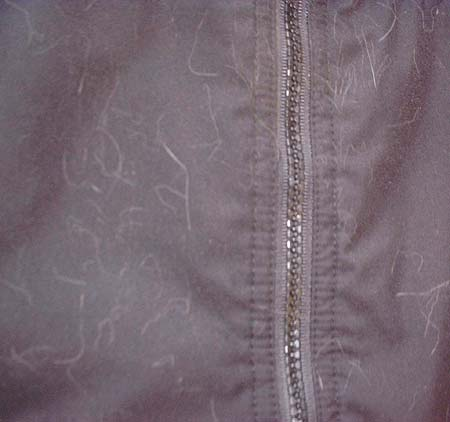 20060415-17.jpg