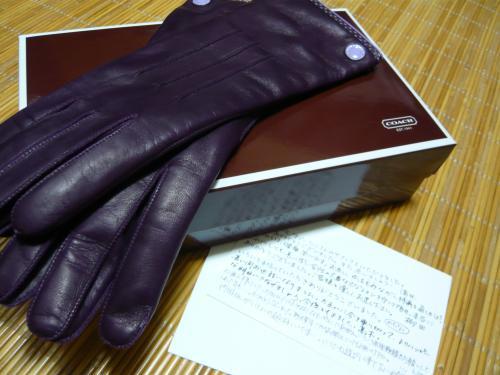 コーチ手袋