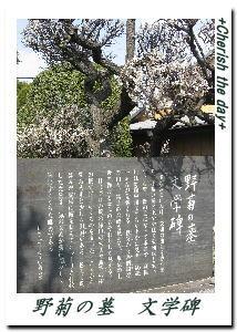 野菊の墓の文学碑☆