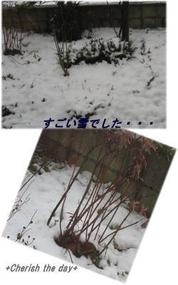 関東で大雪
