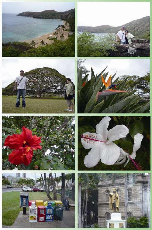 090423_hawaii.jpg